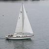 michaud sail_063