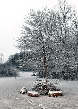 Chirstmas Snow Storm December 25, 2010-5