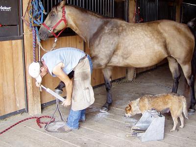 Horseback Riding in Bourbon--3