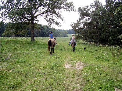 Horseback Riding in Bourbon--9