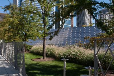 Mellinium Park Chicago IL (27 of 182)