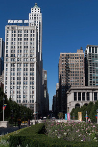 Mellinium Park Chicago IL (9 of 182)