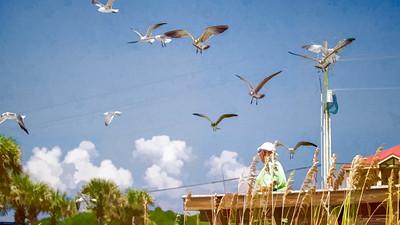 Destin Florida 2013 (8 of 58)