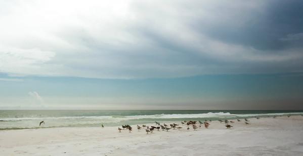 Destin Florida 2013 (26 of 58)