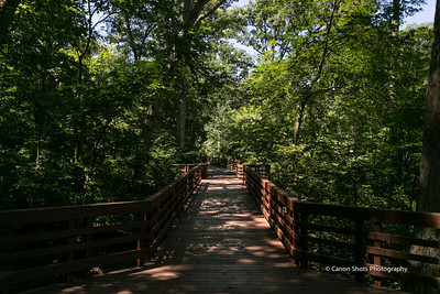 Long View Park Chesterfield MO (5 of 24)