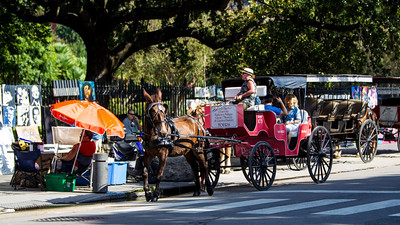 New Orleans Louisiana September 15, 2013-14