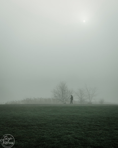 BARRINGTON FOG SUNRISE