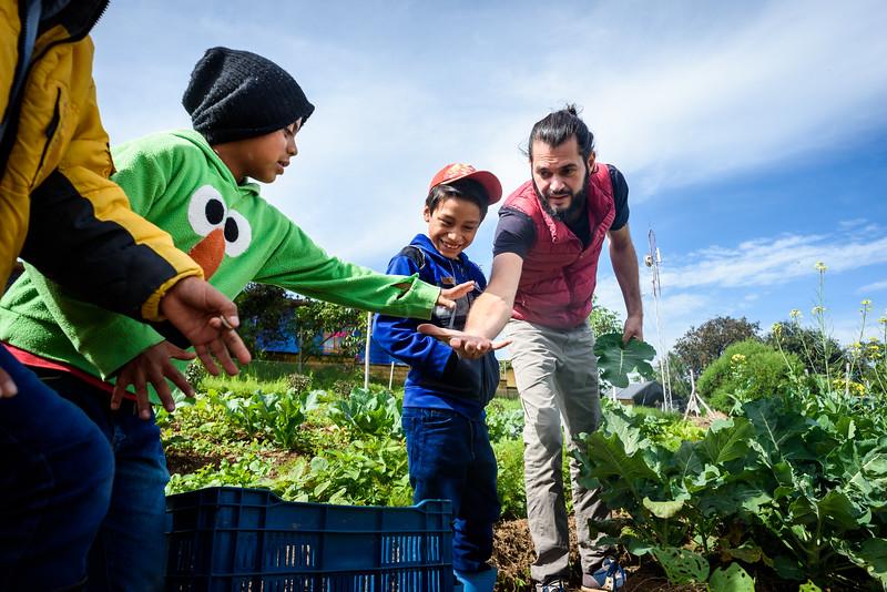 Kelly Giardina - Farm to Table - Project Somos 2019-0022