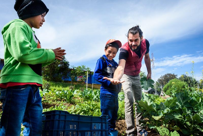 Kelly Giardina - Farm to Table - Project Somos 2019-0021