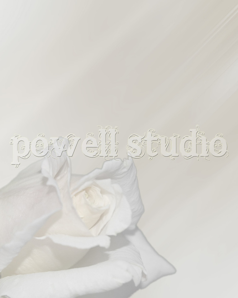 Individual_Beauty-ULT DVD-100 beauty
