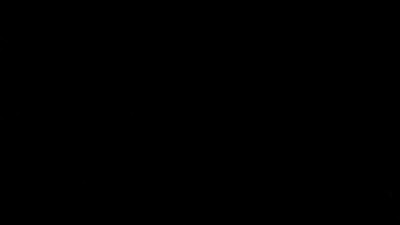MVI_0008