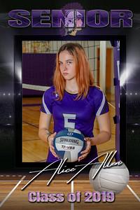 Senior Poster Volleyball