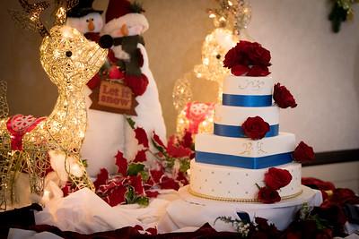 2017-DEC9_Wedding-630