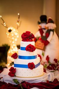 2017-DEC9_Wedding-497