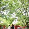 Mr  & Mrs Sobeski-319