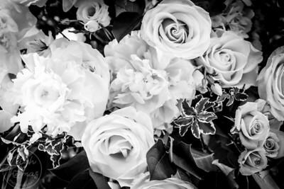 Seville Flowers-3