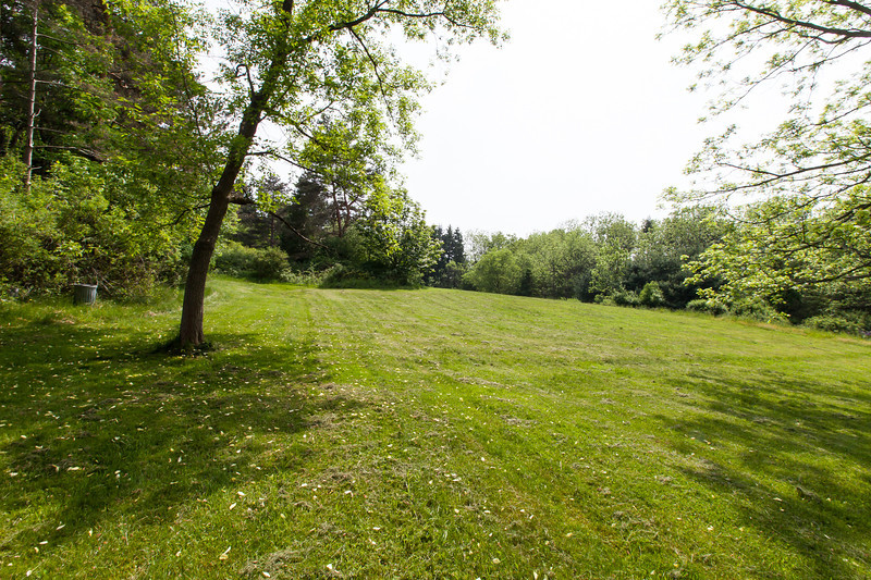 Looking south into back yard