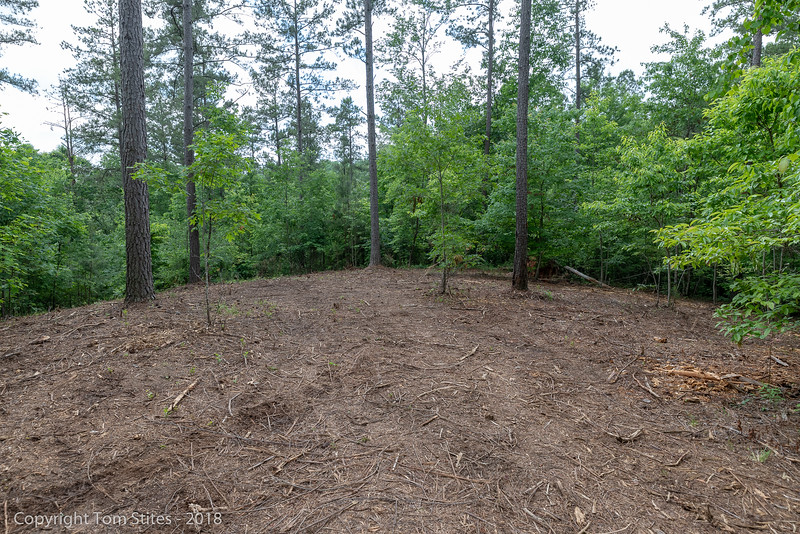 View to SE from rear of cleared section of property.  Property extends about 450' past treeline, down gentle slop to pond of adjoining property owner.  This would be the rear building site...or further down the hill.