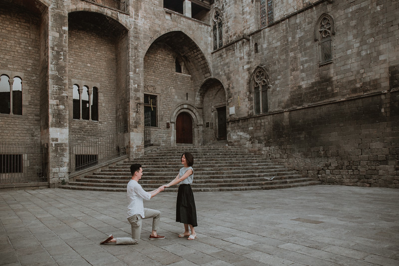 Surprise proposal  Barcelona