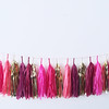 Cranberry Bliss Tassel Garland