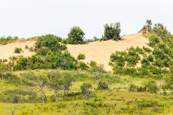 Sande Dune