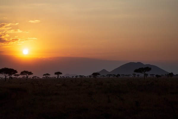 Sunset over Serengeti