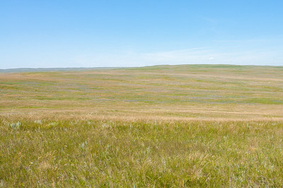 Twin River Heritage Rangeland Natural Area