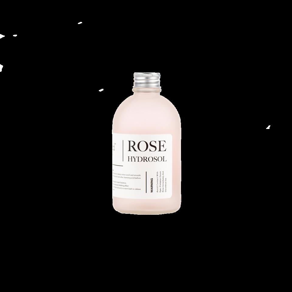 Fresh_Feed_Rose_Isolated_1