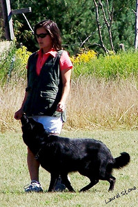 9/05 - O. G. Bierstadt Schutzhund Trial