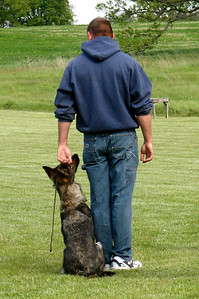 5/08 - O. G. Bierstadt Schutzhund Trial