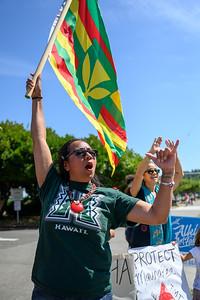 Signs + Aloha 4 Protection of Mauna Kea