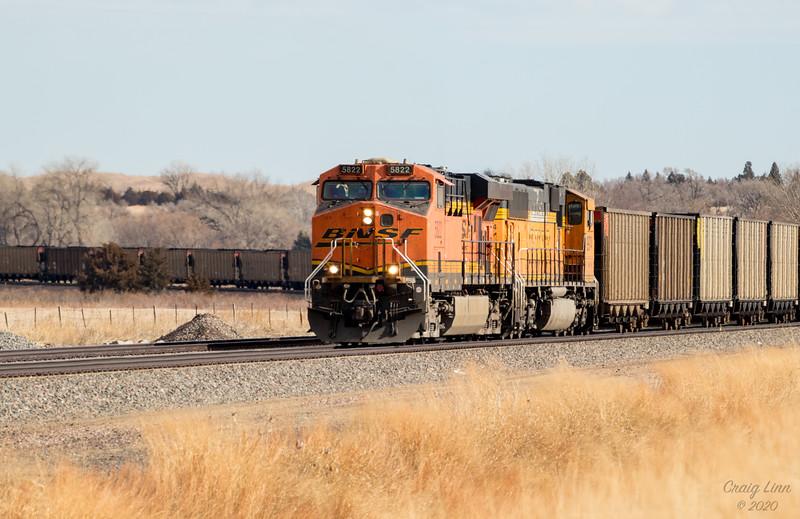 BSNF 5822