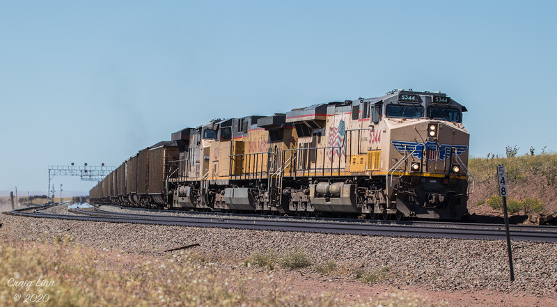 UP 5344 Leads Coal East Bound