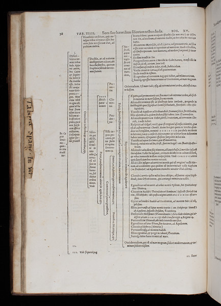 Manuscript waste used as temoin