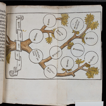 "Hand-coloured table.  <br><br> <b>Author:</b> William Manderston <br> <b>Title:</b><i> Bipartitum in morali philosophia opusculum </i> (Paris, 1523)<br> <b>Shelfmark:</b> K.15.30  <a href=""http://idiscover.lib.cam.ac.uk/primo-explore/fulldisplay?docid=44CAM_ALMA21392189130003606&amp;context=L&amp;vid=44CAM_PROD&amp;search_scope=SCOP_QUE&amp;tab=cam_lib_coll&amp;lang=en_US%20""> (catalogue record)</a>"