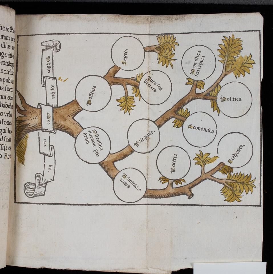 Hand-coloured table.   Author: William Manderston  Title: Bipartitum in morali philosophia opusculum  (Paris, 1523) Shelfmark: K.15.30   (catalogue record)