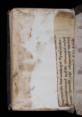 Manuscript waste, 12th century