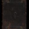 Calf, 16th century