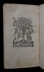 Woodcut printer's device, verso of final leaf.  Title: Nouum Testamentum  (Paris, 1546) Shelfmark: K.17.39