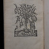 "Woodcut printer's device, verso of final leaf. <br><br> <b>Title:</b><i> Nouum Testamentum </i> (Paris, 1546)<br> <b>Shelfmark:</b> K.17.39  <a href=""http://idiscover.lib.cam.ac.uk/primo-explore/fulldisplay?docid=44CAM_ALMA21423018350003606&amp;context=L&amp;vid=44CAM_PROD&amp;search_scope=SCOP_QUE&amp;tab=cam_lib_coll&amp;lang=en_US%20""> (catalogue record)</a>"