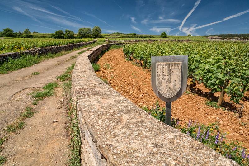 Les Petits Epenots Vineyard of Chateau de Pommard
