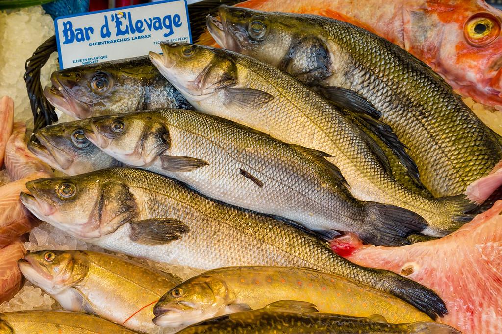 Fish at Moret-sur-Loing Market