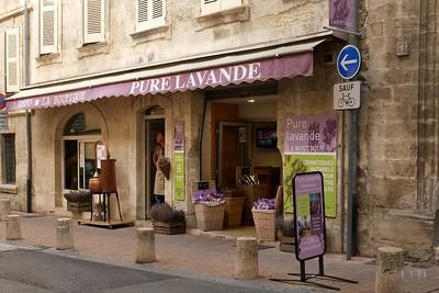Lavande, Avignon, Provence