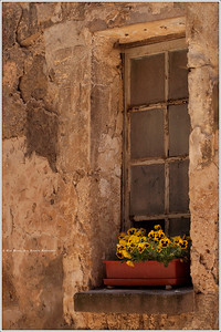 A flowerbox in Bonnieux.