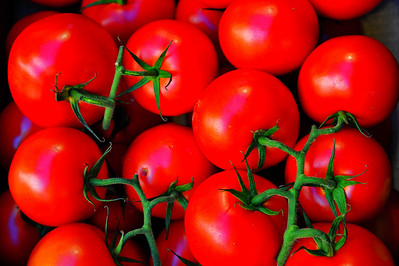 Tomatoes_D3S3740