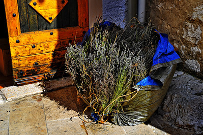 Lavender which was harvested in early August, used to make perfume