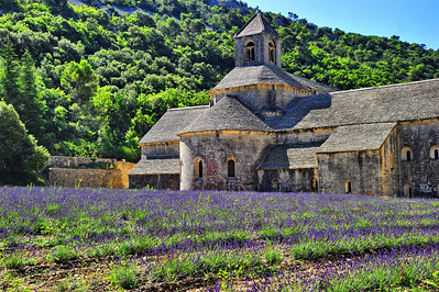 The Senanque Abbey:  had a decent lavender field in the front.  We got there around 10:00 AM which meant the sun was already high in the sky.  Bright sunlight tends to wash out blue color in nature.  These were the best I could do under the light situation.