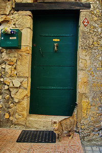 LeBroc_Cat_at_Door_LAN2630