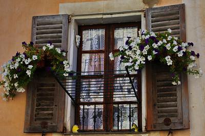 LeBroc_Petunias_Window_LAN2620_1