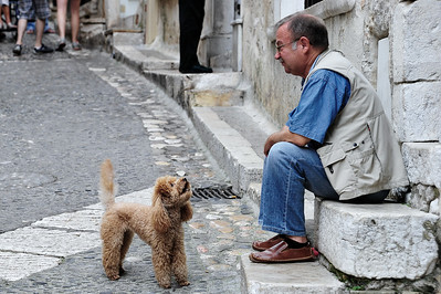 St. Paul de Vence, The French love their dogs.